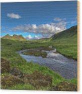 Stream South Iceland Wood Print
