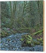 Streaming Through Goldstream Wood Print
