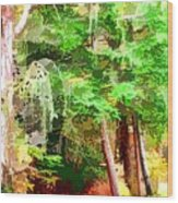 Streams In A Wood Covered With Leaves Wood Print