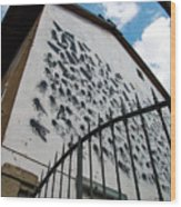 Street Art At The Campidoglio Neighborhood - 5 Wood Print