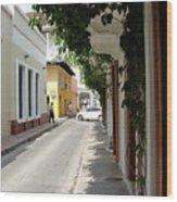 Street In Colombia Wood Print