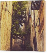 Street In Dubrovnik Old Town Wood Print