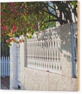 Street In Key West Wood Print