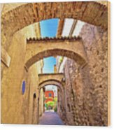 Street Of Sirmione Historic Architecture View Wood Print