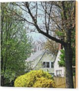 Street With Forsythia Wood Print