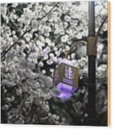 Streetlights In Blossoms Wood Print