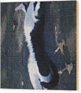 Stretchy Cat Wood Print