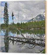 String Lake In Grand Tetons Wood Print