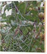 String Of Pearls Wood Print