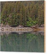 Strip Of Beach Wood Print
