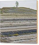 Striped Bank On Side Of A Road In Northwest North Dakota Wood Print