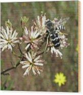 Striped Bee Wood Print