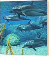 Striped Dolphins Wood Print