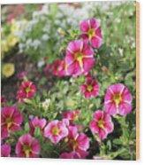 Striped Petunias Wood Print