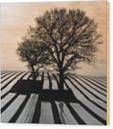 Stripy Evening Wood Print