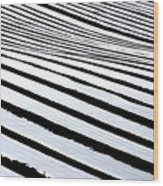 Stripy Land Wood Print
