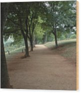 Stroll On Mulberry Row Monticello Wood Print