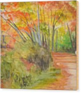Strolling Along The Canal Wood Print