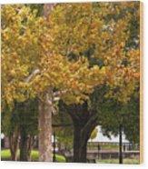 Strolling In Waterfront Park Wood Print