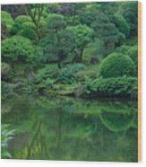 Strolling Pond Serenity Wood Print