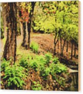 Strolling Through The Park Wood Print by Savannah Fonner