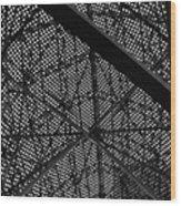 Structural Fish Wood Print
