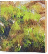 Structure Of Wooden Log Covered With Moss, Closeup Painting Detail. Wood Print