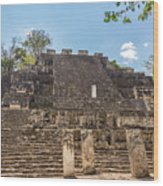 Structure Two In Calakmul Wood Print