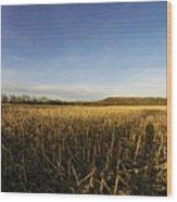 Stubble Field  Wood Print