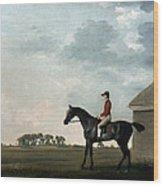 Stubbs: Gimcrack, 1765 Wood Print