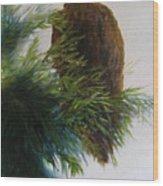Study, Eagle Wood Print