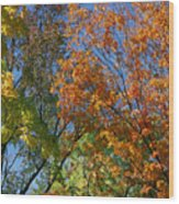Study For Autumn 2 Wood Print