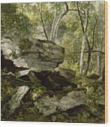 Study From Nature   Rocks And Trees Wood Print