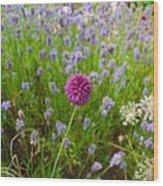Study In Purple Wood Print