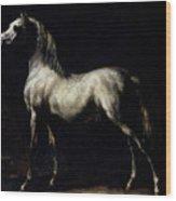Study Of A Dapple Grey Wood Print