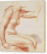 Study Of A Female Nude Seated Wood Print