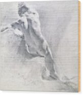 Study Of A Male Nude Wood Print