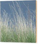 Study Of Grass Wood Print