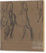 Study Of Horses Wood Print