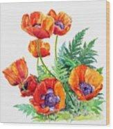 Study Of Poppies Wood Print