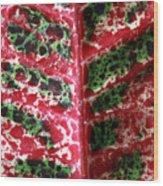 Study Of The Croton 3 Wood Print