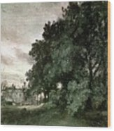 Study Of Trees Wood Print by John Constable