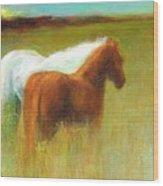 Study Of Two Ponies Wood Print