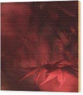 Study Of Uplit Leaves Wood Print