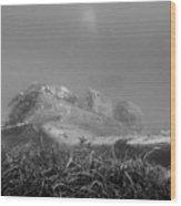 stuka bomber wreck III Wood Print