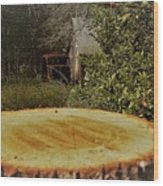 Stump Barn Car Wood Print