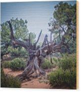 Stump In The Fog Wood Print