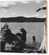 Stump Lake Wood Print