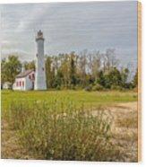 Sturgeon Point Ligthouse Lake Huron, Lower Peninsula, Mi Wood Print