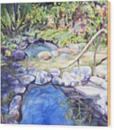 Sublime Pools  Wood Print by M Schaefer